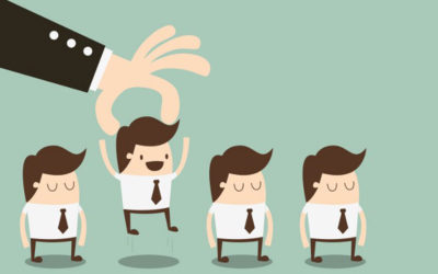 New-Comers, Worker-Bees and Key People of Influence