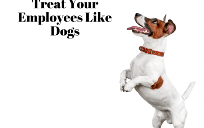 Treat Your Employees Like Dogs